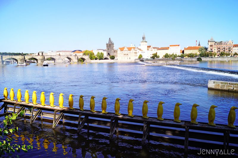 Prague vltava